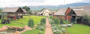 Askari Game Lodge - Beeld Sept 2021
