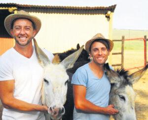 The Donkey Dairy - Beeld Sept 2021